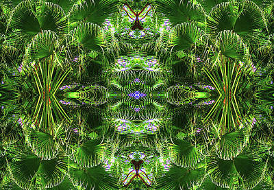 Photograph - Palm Frenzy by Sherrie Hall