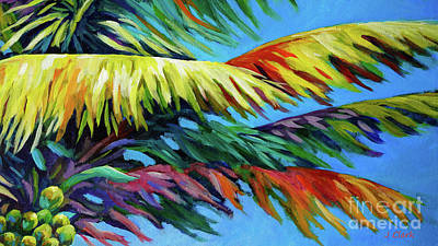 Abstract Royalty-Free and Rights-Managed Images - Palm Frond Frenzy by John Clark