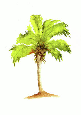 Sean - Palm Tree Number 6 by Michael Vigliotti