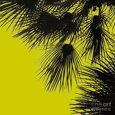 Staff Picks Cortney Herron - Palm Tree Silhouette No.1 by Fei A