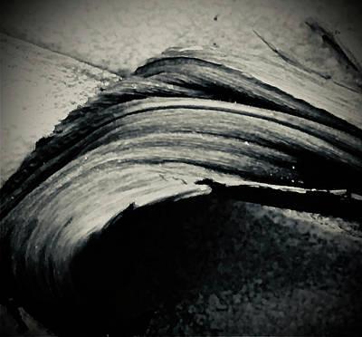 Digital Art - Palmistree by Michelle Hoffmann