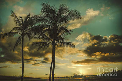 New Years - Palms of Kapalua  by Kelly Wade