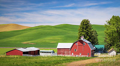 Royalty-Free and Rights-Managed Images - Palouse Farm Panorama by Inge Johnsson