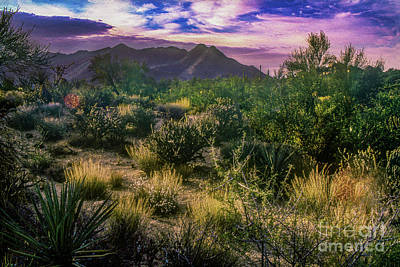 Transportation Digital Art - Paradise Valley - View Two by Anthony Ellis