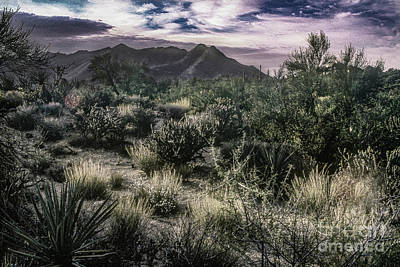 Transportation Digital Art - Paradise Valley - View Two - Monochrome by Anthony Ellis