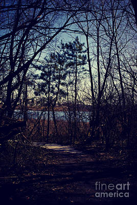 Frank J Casella Royalty-Free and Rights-Managed Images - Path to Prairie Lake by Frank J Casella