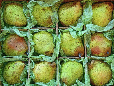 Queen Rights Managed Images - Pears For Sale Royalty-Free Image by Robert Tubesing