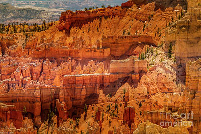 Personalized Name License Plates - Peekaboo Trail Brice Canyon by Mitch Shindelbower