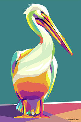 Royalty-Free and Rights-Managed Images - Pelican by Stars on Art