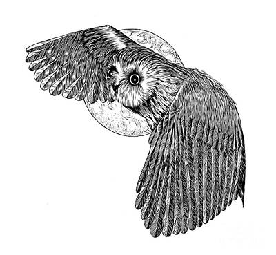 Animals Drawings - Pen and Ink Owl And Moon Drawing Abstract Expressionist Effect by Rose Santuci-Sofranko