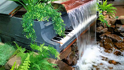 Moody Trees Rights Managed Images - Piano Fountain  Royalty-Free Image by Ally White