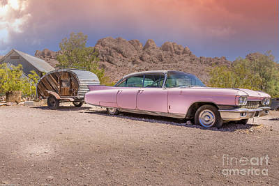 Reptiles - Pink Cadillac by Mitch Shindelbower