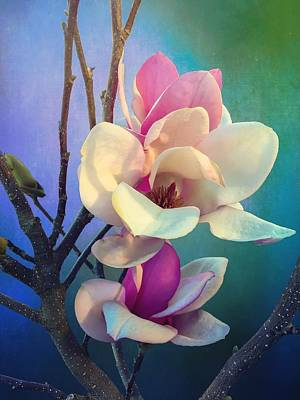 All American - Pink Magnolia by Christina Ford