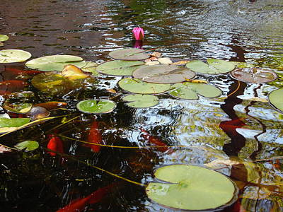 All Black On Trend - Pink Pond Lily - Two by Cher Kelley