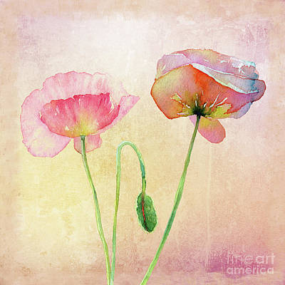 Digital Art - Pink Poppies by Mary Machare
