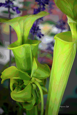 Food And Flowers Still Life - Pitcher Plant Vignette - Posterized by Suzanne Gaff