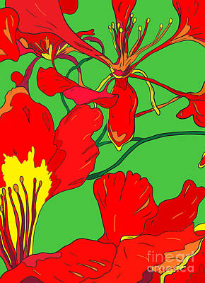 Mistletoe - Poinciana Detail by John Clark