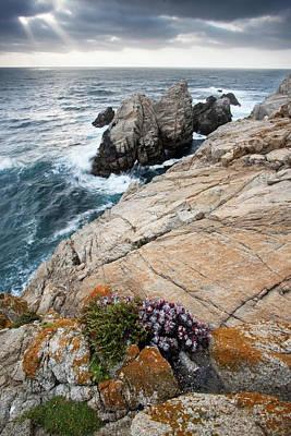 Photograph - Point Lobos forever by Emmanuel Rondeau