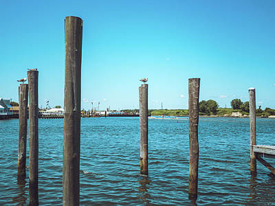 Photograph - Point Pleasant Piers by David Oakill
