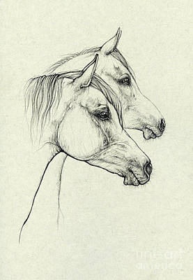 Animals Drawings - Polish arabians 2020 01 01 by Angel Ciesniarska