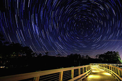 Owls - Polley Gully Startrails by Nick Noble