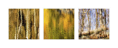Target Threshold Nature - Pond Reflections Triptych by Francis Sullivan