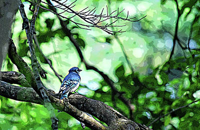 Thomas Kinkade - Pop Art Blue Jay by Maria Keady