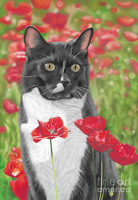 Recently Sold - Karie-ann Cooper Royalty-Free and Rights-Managed Images - Poppy by Karie-ann Cooper