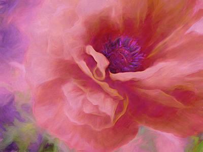 Anchor Down - Poppy Power 16 by Lynda Lehmann