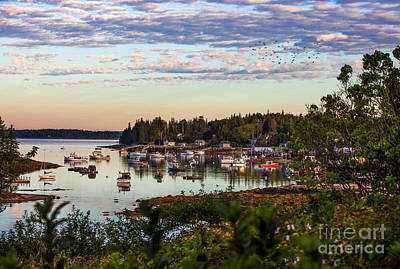 Rights Managed Images - Port Clyde Harbor, Maine Royalty-Free Image by Diane Diederich