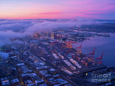 Nautical Animals - Port of Seattle Sunrise Clouds by Mike Reid