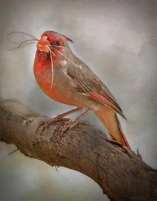 Aretha Franklin - Portrait of a Desert Cardinal by Teresa Wilson