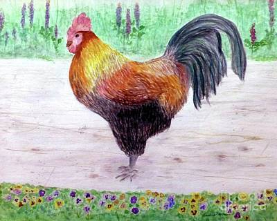 Fleetwood Mac - Poultry and Pansies by Barbie Corbett-Newmin
