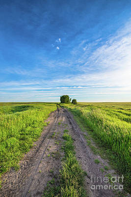 Photograph - Prairie Road by Ian McGregor