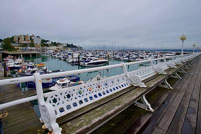 Winter Animals - Princess Pier, Torquay, Devon, England. by Joe Vella