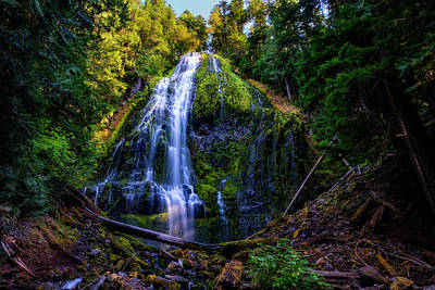 Roaring Red - Proxy Falls by Pelo Blanco Photo