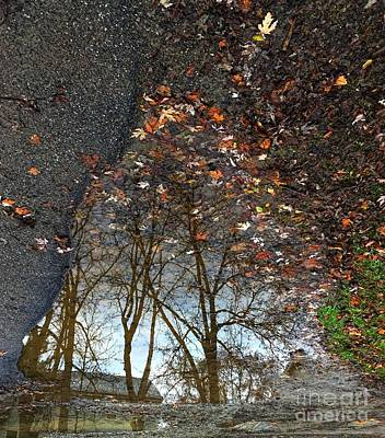 Winter Animals - Puddle Tree by Sarah Niebank