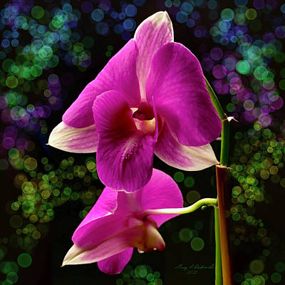 Outdoor Graphic Tees - Purple Dendrobium Orchid by Gary F Richards