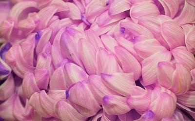 Fruits And Vegetables Still Life - Purple Petals by Maria Faria Rodrigues