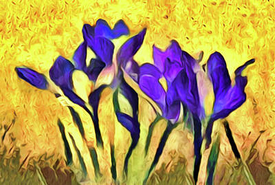 Clouds Royalty Free Images - Purple Spring Crocus Flowers Royalty-Free Image by Susan Maxwell Schmidt