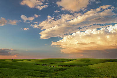 Scott Bean Rights Managed Images - Quiet on the Prairie Royalty-Free Image by Scott Bean