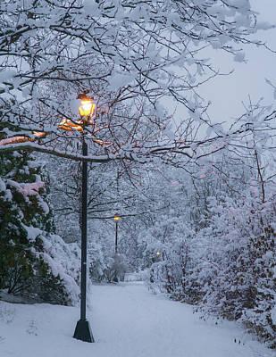 Photograph - Quiet Winter Lights by Dave Matchett