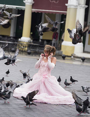 Animals Royalty-Free and Rights-Managed Images - Quinceanera with Pigeons by Alex Lapidus