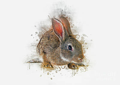 Farmhouse Royalty Free Images - Rabbit Art Royalty-Free Image by Ian Mitchell