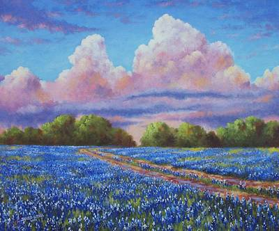 Landscapes Royalty-Free and Rights-Managed Images - Rain For The Bluebonnets by David G Paul