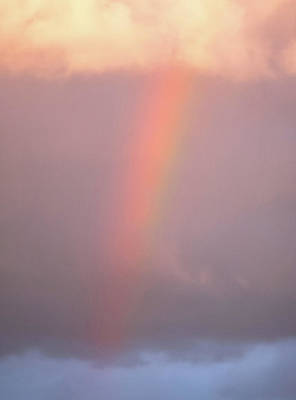 Royalty-Free and Rights-Managed Images - Rainbow Bright by Martin Newman