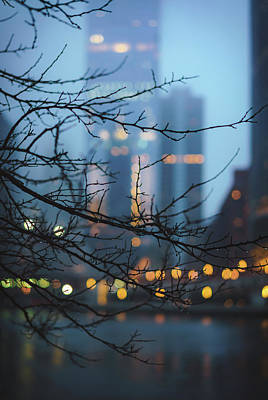 The Champagne Collection - Rainy Days Bokeh by Nisah Cheatham