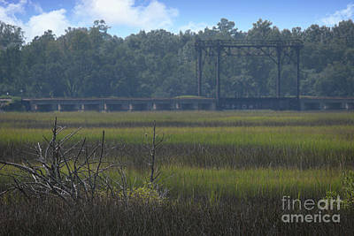 Food And Flowers Still Life - Rantowles Creek Train Trestle - Hollywood South Carolina by Dale Powell