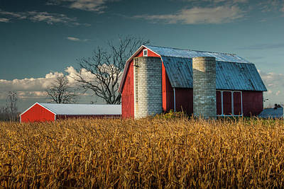 Venice Beach Bungalow - Red Barn and Cornfield in West Michigan on a Sunny Day by Randall Nyhof