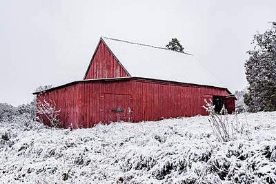 Photograph - Red Barn In Snow by Sharon Popek